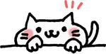 cat_movies.jpg